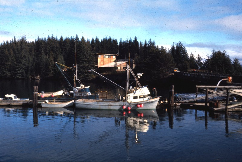 Wakefield Cannery at Settler Cove, Kizhuyak Bay, Kodiak Island