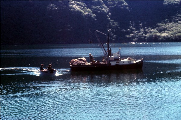 Those lost overboard, off of the dock, and out of skiffs are listed in the 1972-2010 Maritime Losses Section