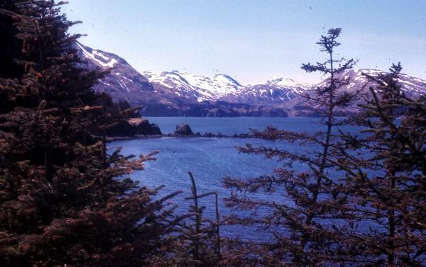 Monashka Bay, Kodiak Island