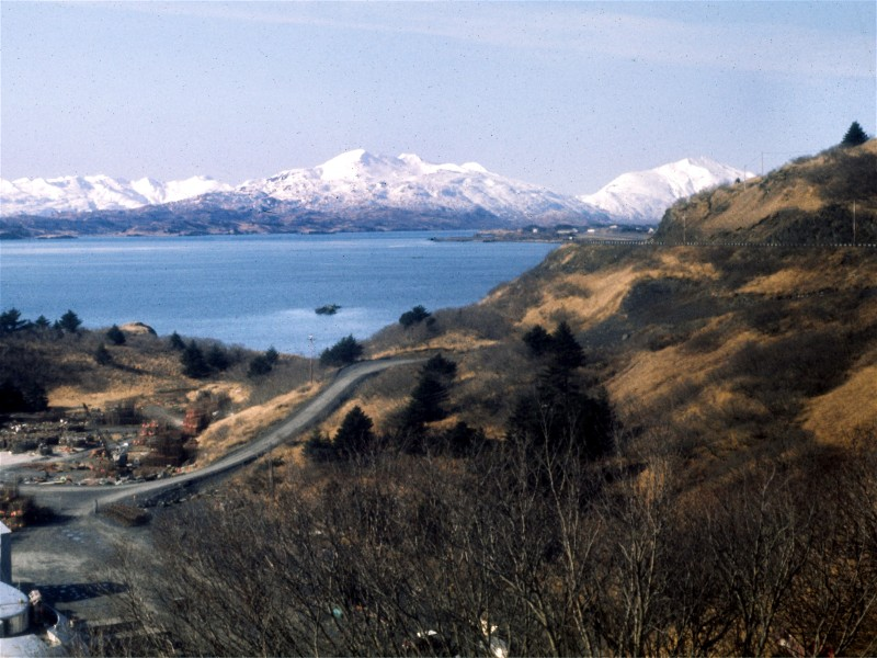 Looking south into Womens Bay, Kodiak
